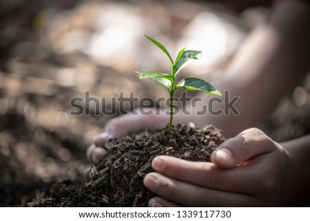 Natural care concepts and world preservation, global warming reduction. World Environment Day. #1339117730
