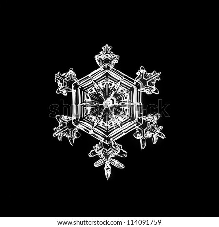 Natural Christmas snowflake on black background for design