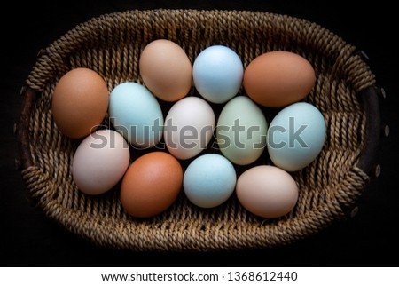 Natural colors for diversity, multicultural image, or Easter