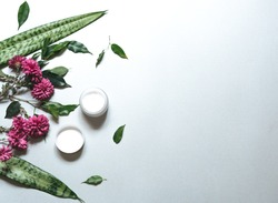 Natural cosmetics. Composition with body care products, white cream and green leaf and purple flowers over white background, top view,  FLAT LAY.