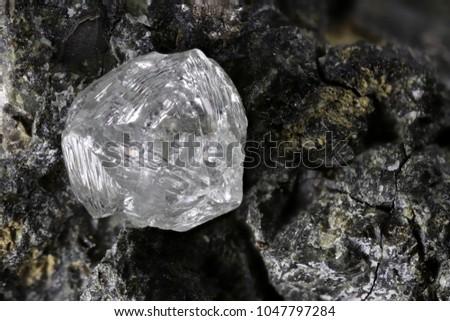 natural diamond nestled  - Shutterstock ID 1047797284
