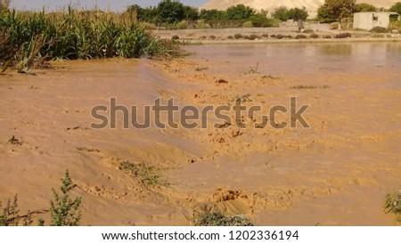 Natural disasters Rain #1202336194