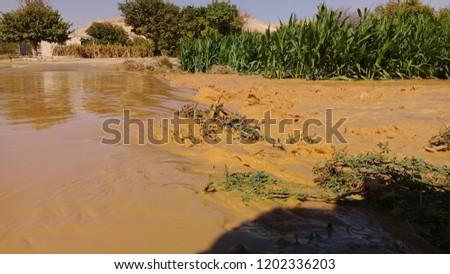 Natural disasters Rain #1202336203