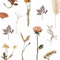 Natural dried flower wallpaper pattern