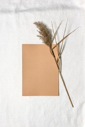 Natural dried reed flower and camel square blank paper sheet on white linen. Flat lay background with dried flower arrangement and copy space. Organic design. Pastel colors. Vertical orientation.