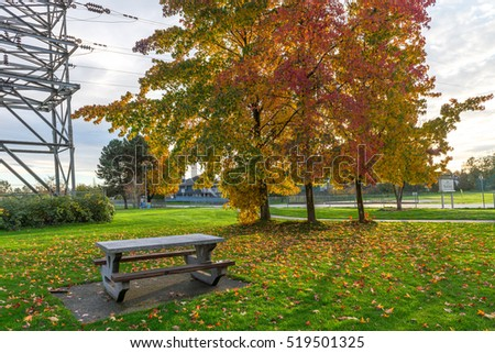 Natural during autumn in Vancouver Canada Oct 2016 - Shutterstock ID 519501325