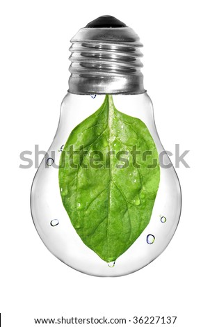 Natural energy concept. Light bulb with green spinach leaf inside isolated on white - stock photo