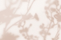Natural flower shadows are blurred on light brown and cream color wall at home at sunrise.