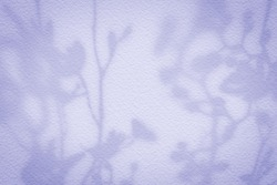Natural flower shadows are blurred on light pink rose and mauve color wall at home at sunrise.