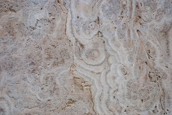 Natural freshwater limestome (Italian banded marble, calc tufa, travertin) textured structure