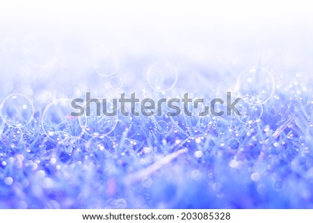 Natural grass blue filtered bokeh blurred background.