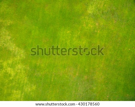Natural grass texture, Aerial view of park #430178560