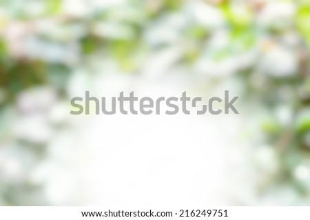 Natural green blurred background. De-focused green blurred background.