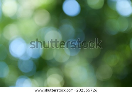 Natural green blurred background, Defocused green abstract background.