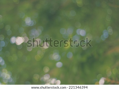 Natural green blurred  in the dark background. Defocused green abstract  background.