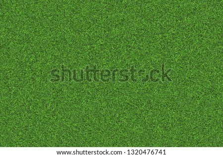 Natural Green grass texture. Perfect Golf or football field background. Top close up view, horizontal #1320476741