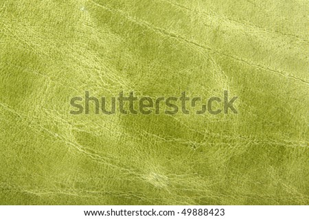 Natural green leather background closeup