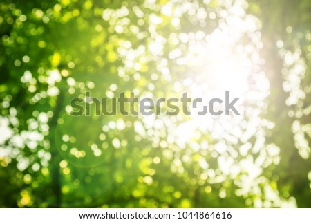 Natural green leaves white background. #1044864616