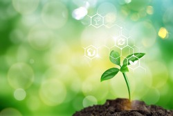 Natural green plants with biochemistry structure illustration