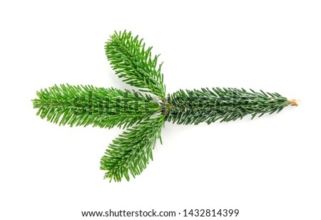 Natural green spruce twig isolated on white background. Lush fir branches or pine twigs sprig texture top view #1432814399