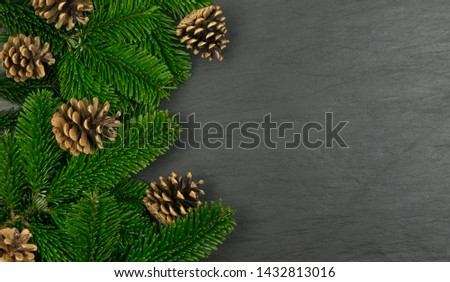 Natural green spruce twig on white background. Lush fir branches or pine twigs sprig texture top view #1432813016