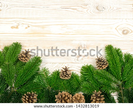 Natural green spruce twig on white background. Lush fir branches or pine twigs sprig texture top view #1432813019