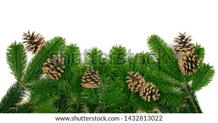 Natural green spruce twig on white background. Lush fir branches or pine twigs sprig texture top view #1432813022