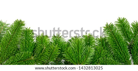 Natural green spruce twig on white background. Lush fir branches or pine twigs sprig texture top view #1432813025