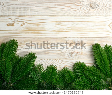 Natural green spruce twig on white background. Lush fir branches or pine twigs sprig texture top view #1470132743