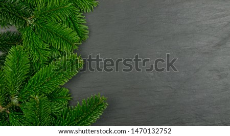 Natural green spruce twig on white background. Lush fir branches or pine twigs sprig texture top view #1470132752