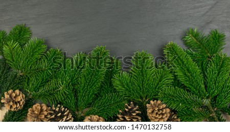 Natural green spruce twig on white background. Lush fir branches or pine twigs sprig texture top view #1470132758