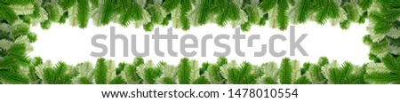 Natural green spruce twig on white background. Lush fir branches or pine twigs sprig texture top view #1478010554