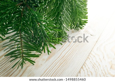 Natural green spruce twig on white background. Lush fir branches or pine twigs sprig texture top view #1498855460