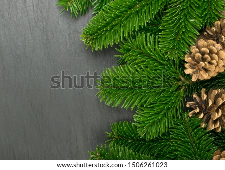 Natural green spruce twig on white background. Lush fir branches or pine twigs sprig texture top view #1506261023