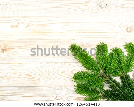 Natural green spruce twig on wooden rustic background. Fir branches or pine twigs with copyspace top view #1264514413