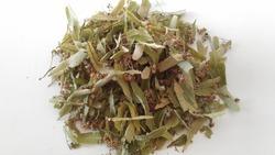 natural healthy linden blossom and leaf