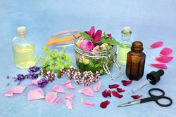 Natural herbal medicine with summer flowers and herbs steeping in a jar with oil and loose to make aromatherapy essential oil. Still life for naturopathic health care concept.