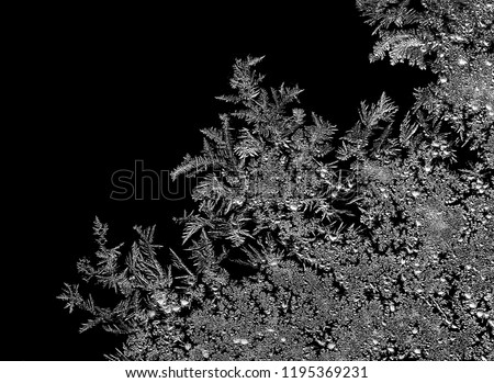 Natural ice crystals frostwork pattern on dark background. Macro close-up.