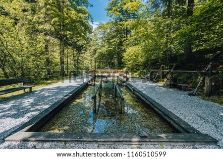 Natural Kneipp spa therapy in austra alps, Weissee. Natural spa in green forest with pristine water of an alpine creek. Nice summer day.