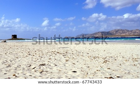 Natural landscape of a shore or beach