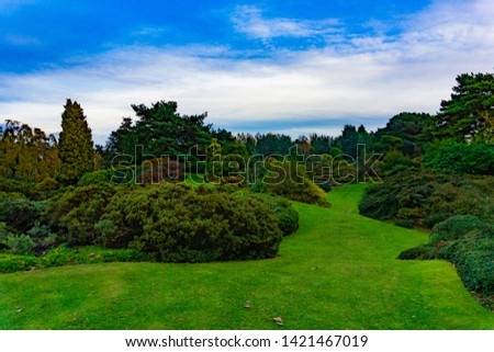Natural landscape of green trees in a garden with large green field in cloudy blue sky day