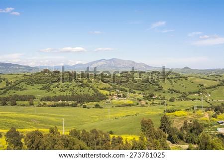 Natural landscape, valley, blue sky, green fields, spring