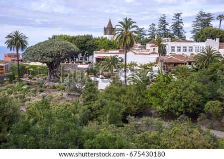 Shutterstock Natural landscape with palm trees and millenarian Drago in the village of Icod de los Vinos, in the north of the island of Tenerife, Canary Islands