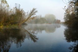 Natural landscape with the Órbigo River, riverside vegetation and fog during autumn. Province of León, Spain.
