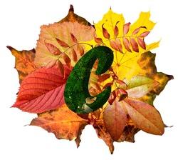 Natural leaf letter C, vibrant color alphabet, isolated design element, autumn colors, lowercase