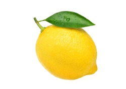 Natural Lemon fruit with green leaf and water droplets isolated on white background. Clipping path.