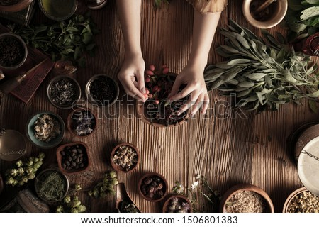 Natural medicine concept. Vintage female healer working with dry and fresh herbs.