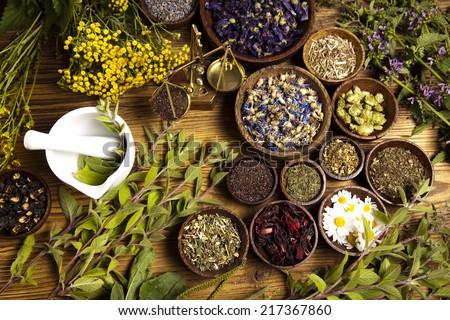 Natural medicine, herbs #217367860