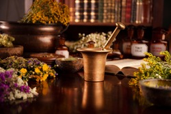 Natural medicine. Mortar, dry and fresh herbs. Wooden table, library background. Retro aesthetics.