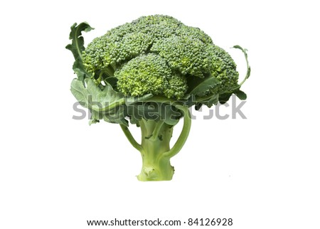 Natural Organic Broccoli isolated on white background